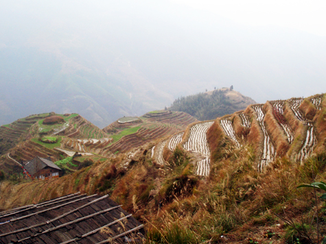 Happy Journey to Longji Terraces (Longji Titian)