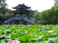 2 Day Essence of Hangzhou Tour