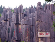 3 Days Kunming Tour