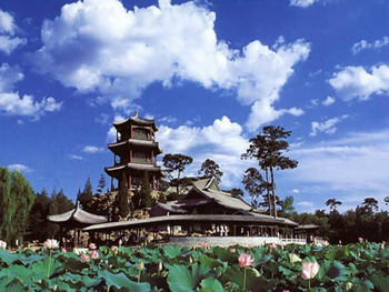Water Lily Chengde Mountain Resort and Outlying Temples,Bishu shanzhuang,Beijing