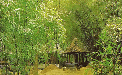 China Travel Guide, Sichuan Tours, Chengdu Attraction, Thatched Cottage of Dufu in Chengdu