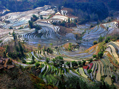 China Tours, Yunnan Travel Guide, Yuanyang Terraced Fields of Yunnan