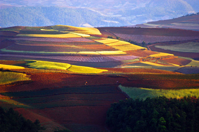 China Tours, Yunnan Attraction, Kunming Travel Guide, Dongchuan Red Land of Kunming