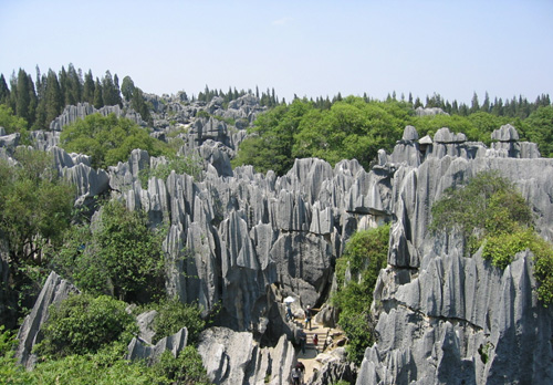 Forest Stone in Kunming