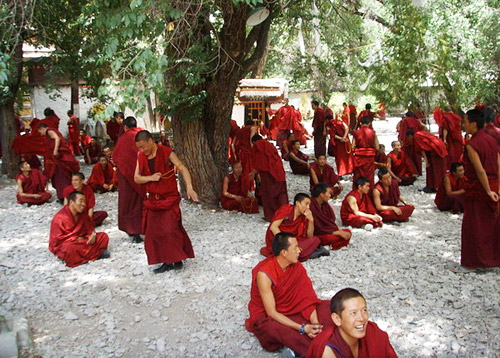 Lamas of a Tibetan temple are ready for the Lama Debating.