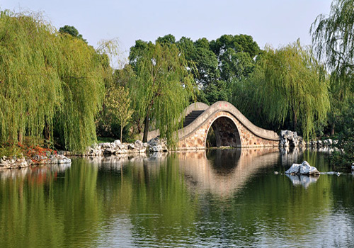 A Chinese Arch Bridge in Li Garden