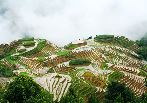 "The ""Seven Stars Accompany the Moon"" is located in the Dragon's Backbone Rice Terraces,Ping'an Village,Longsheng,Guilin."