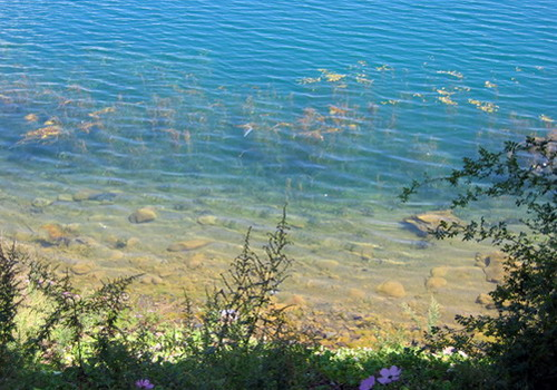 The water of Lugu Lake is extremely clean, you may see at least 7 meters under the water from the water surface.