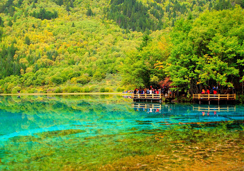 Being covered by 52% natural forest,Jiuzhaigou Valley Scenic and Historic Interest Area has a large variety of flora and fauna.