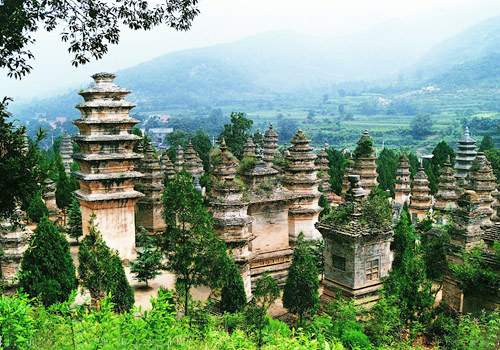 The forest of towers,located in the west of Shaolin Temple at the foot of a hill,is the existing largest one in China.
