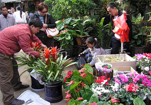 Flowers available at all seasons has become a trademark of Kunming.