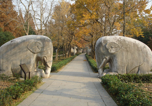 The animal stone sculptures of Ming Xiaoling Mausoleum,Nanjing attrctions.