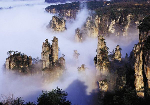 Peculiar peaks of Zhangjiajie National Forest Park in morning mist.