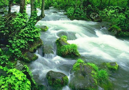 Jinbian Brook is well known as the prettiest section in entire Wulingyuan Scenic Area.