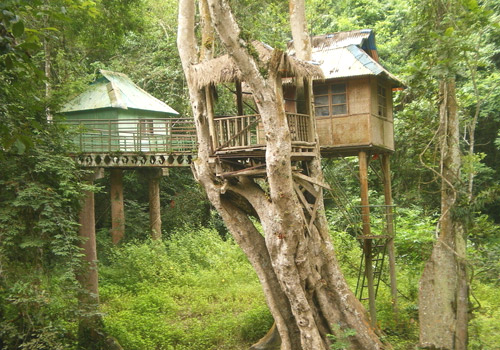 Tree houses can be seen in the tropical forest of Wild Elephant Valley,in Xishuangbanna.