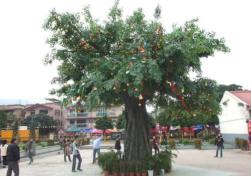 "The public can make a wish by casting a ""Bao Die"" onto the simulated Wishing Tree in Lam Tsuen,Hong Kong."