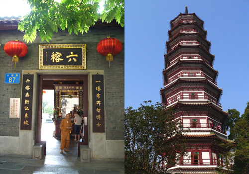 Built in the year of 537,the Temple of Six Banyan Trees is one of famous historical sites in Guangzhou.