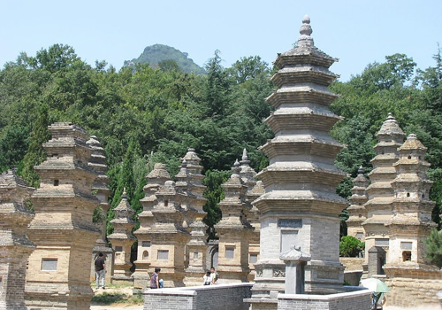 Forest of Dagobas,a significant part of Shaolin Temple,is the existing largest dagoba forest in China.