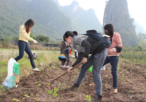 Experience Rural Life, Savor Sweet Potatoes and Taros