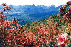 Yao Mountain / Mount. Yaoshan