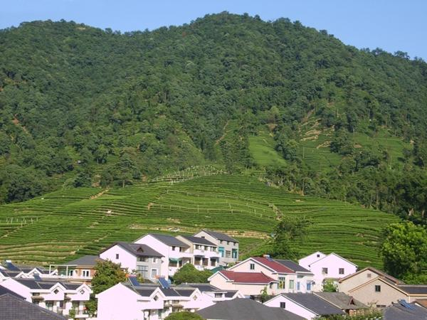 Meijiawu Tea Village