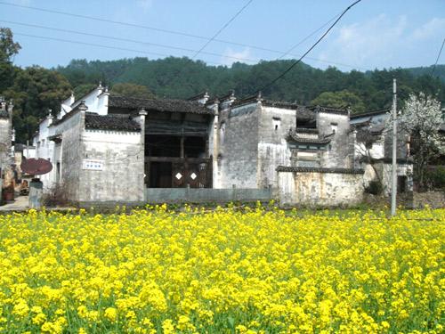 Xiaoqi Village