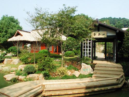 Chinese Tea Museum