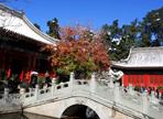 Xiangshan (Fragrant Hills) Park