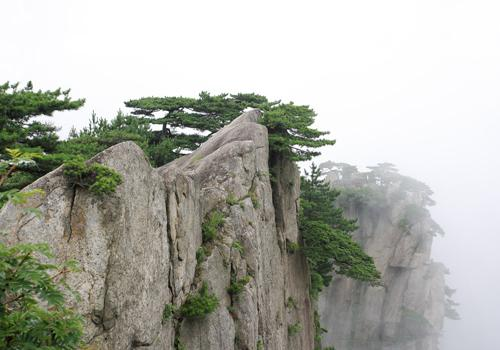 Yellow Mountain,Huangshan