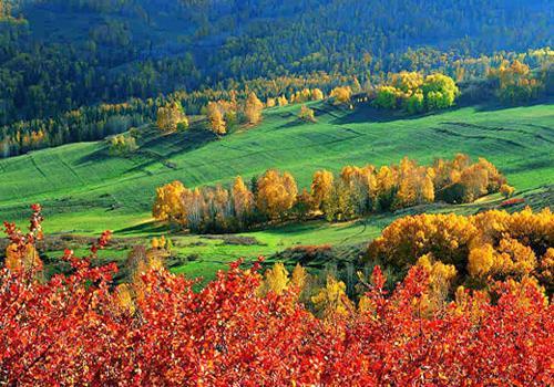 Altai Xinjiang