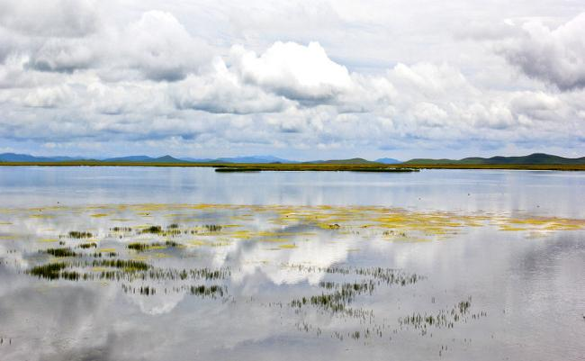 Flower Lake of Ruoergai Grassland, Aba