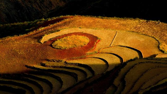 The fancy Dongchuan Red Land of Kunming