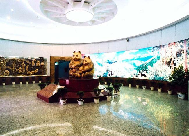 An interior scene in Panda Museum, Wolong