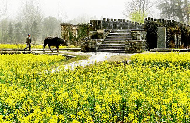 A scene in spring of Nanping Ancient Village, Huangshan