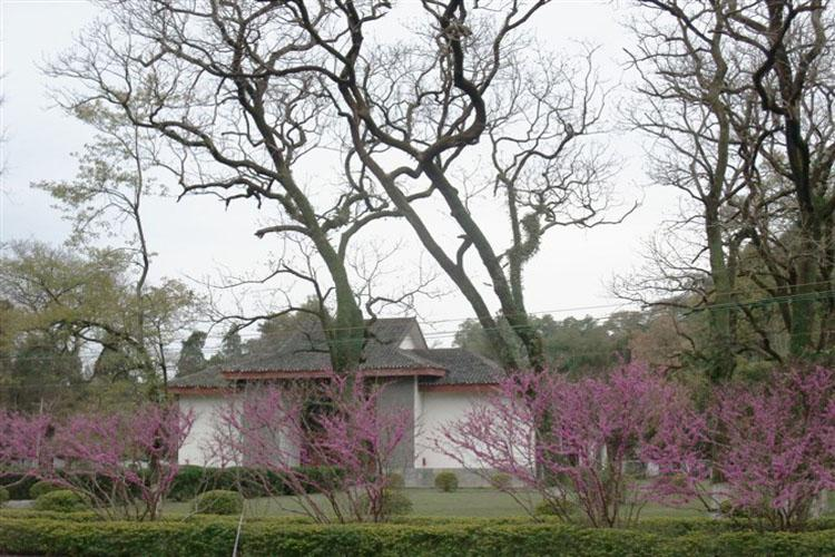 Peach Trees in Yanshan Garden of Guilin