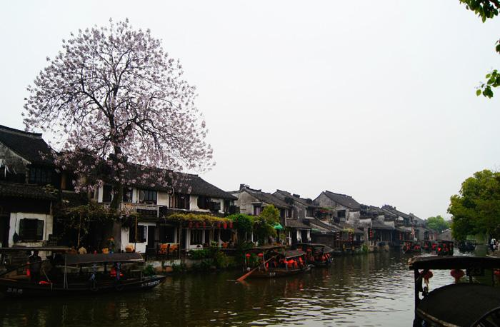 The spring scenery in Xitang.