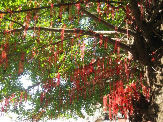 A past scene o f the Lam Tsuen Wishing Tree with red wishing pieces.