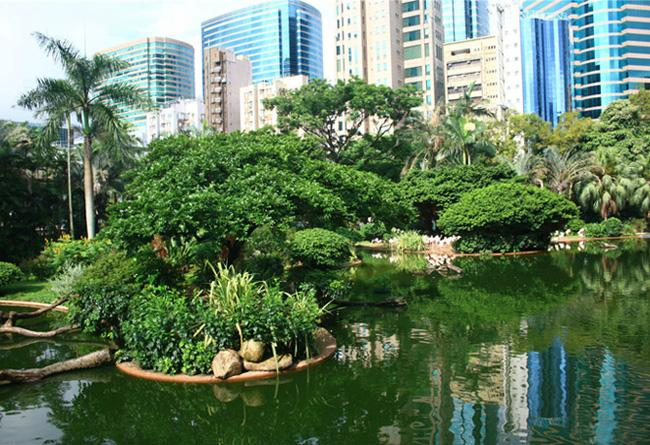 Kowloon Park of Hong Kong boasts numerous lush green trees and attract a great variety of birds.