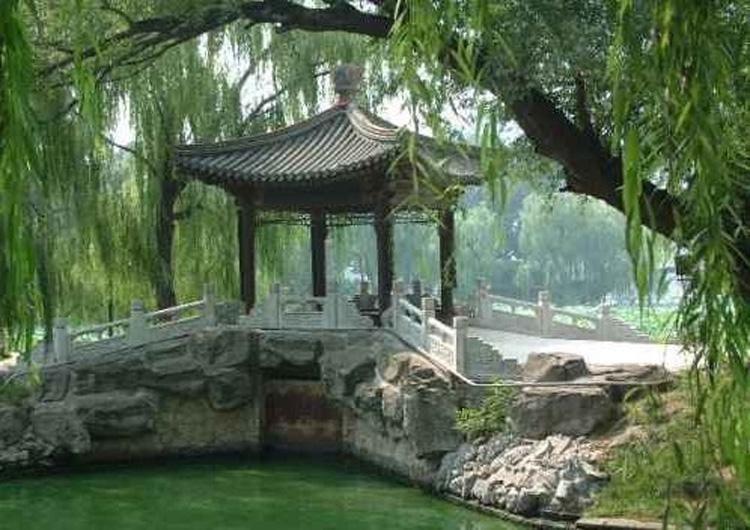 Watch Pines in Temple of Heaven; Watch Willows Along Chang River in Beijing