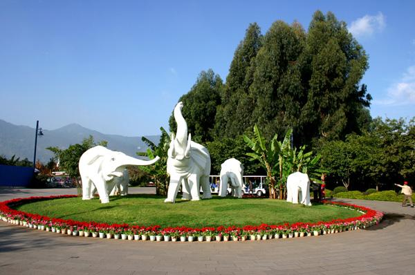 The sculpture of white elephants, Kunming