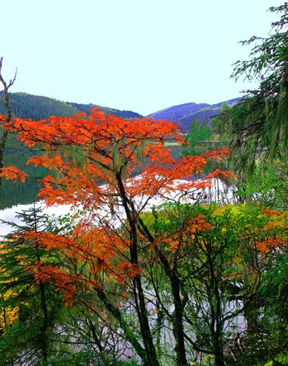 Amazing scenery in Shuoduhai Lake attraction in autumn
