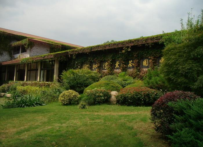 The Chinese Tea Museum is China's largest tea museum located in the beautiful Longjing Village near the West Lake.