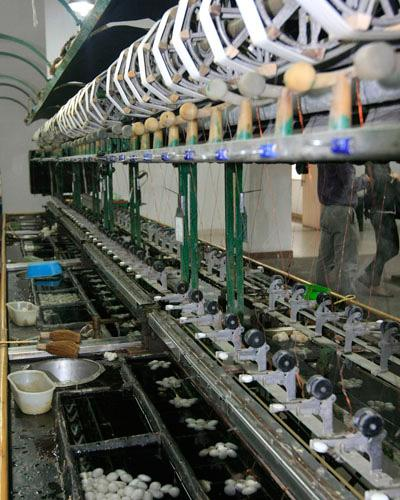 The production line of making silk products