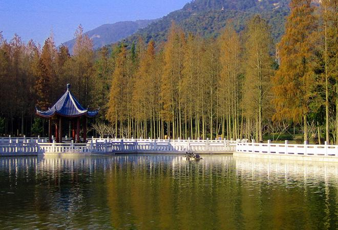 Fuzhou National Forest Park is renowned as a natural oxygen bar.