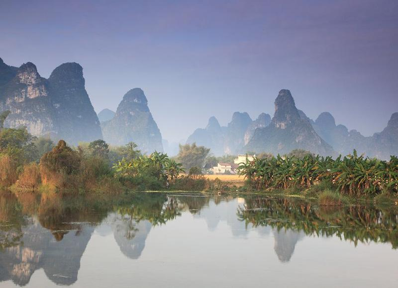 Banana trees on the bank of Ming-shi River in Guangxi, China