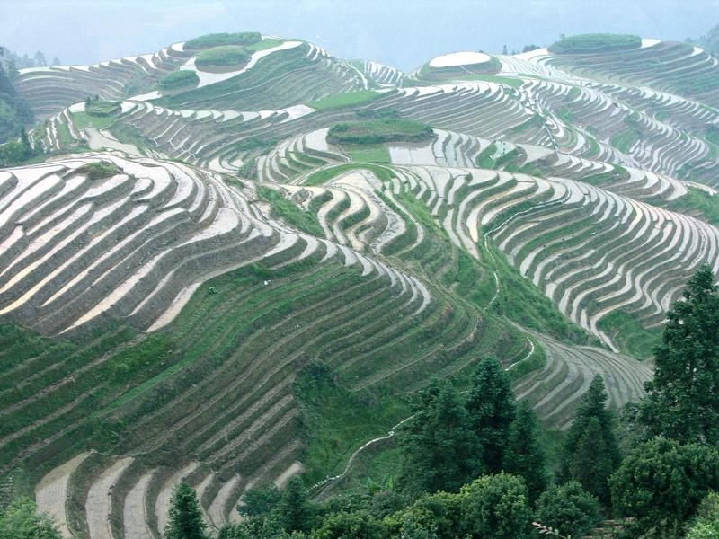Dragon rice terraces longshen dragon 39 s backbone longji for Terraces opening times