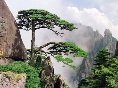 10 Days China Ancient City and Natural Scenery Tour with Xi'an, Beijing, Huangshan and Hangzhou