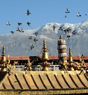 6-Days Lhasa Gyangtse Shigatse Ancient City Join-in Tour