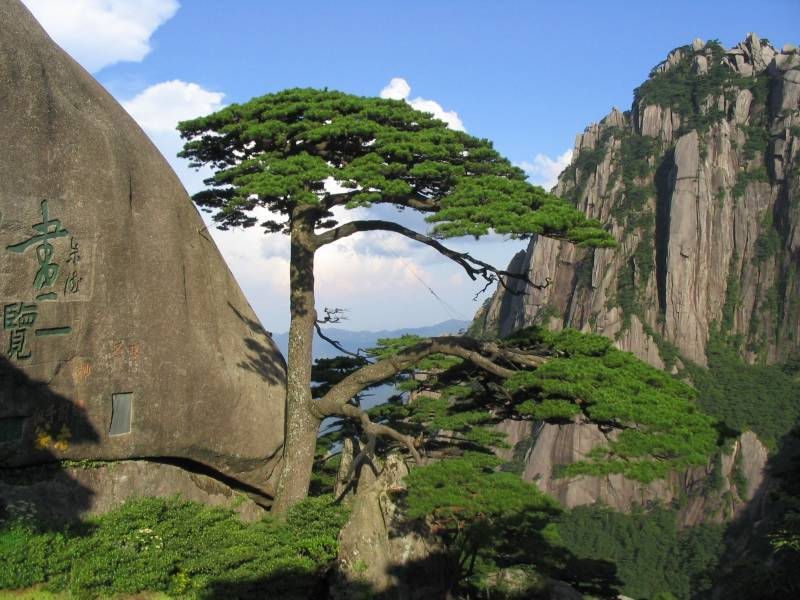 7 Days Beijing-Huangshan-Beijing Wonders Tour