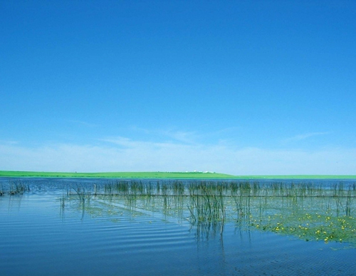 11 Days Hulunbuir & Manzhouli Tour with a Mix of Natural, Ethnic and Cultural Flavor